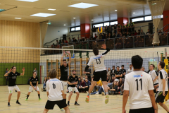 HTL_Volleyball2017_16